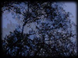 """Videoart piece """"To the Wind"""""""